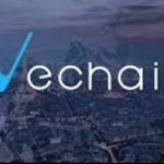 VeChain (VEN) Cryptocurrency Review – The Future