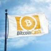 Bitcoin Cash Review – cryptocurrency with a rising value nearly on a daily basis